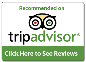 Αποτέλεσμα εικόνας για tripadvisor icon